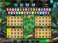 jeu de bingo sur le thème de l'amzonie