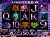 Panther Moon en ligne